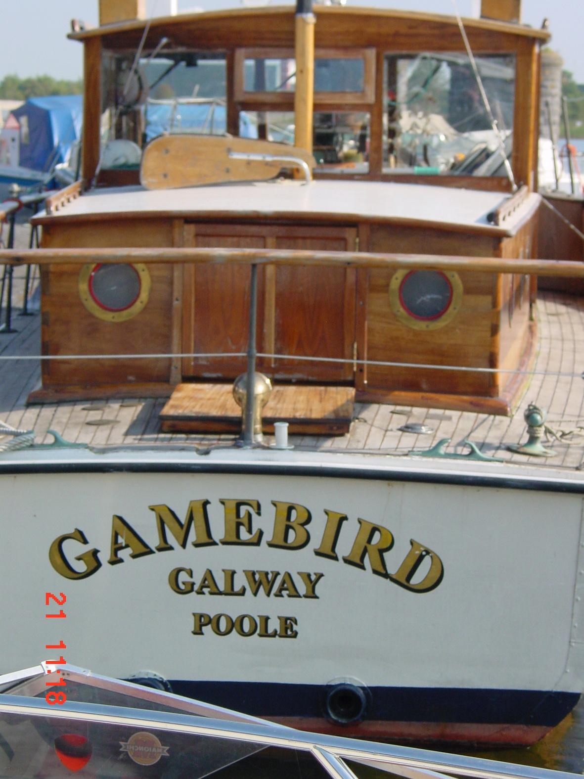 Gamebird again