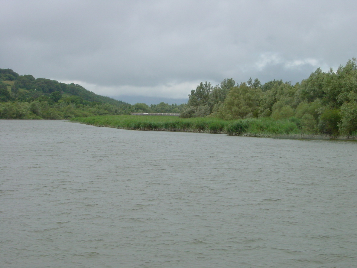 Looking back up the non-navigable channel towards Fiddown Bridge