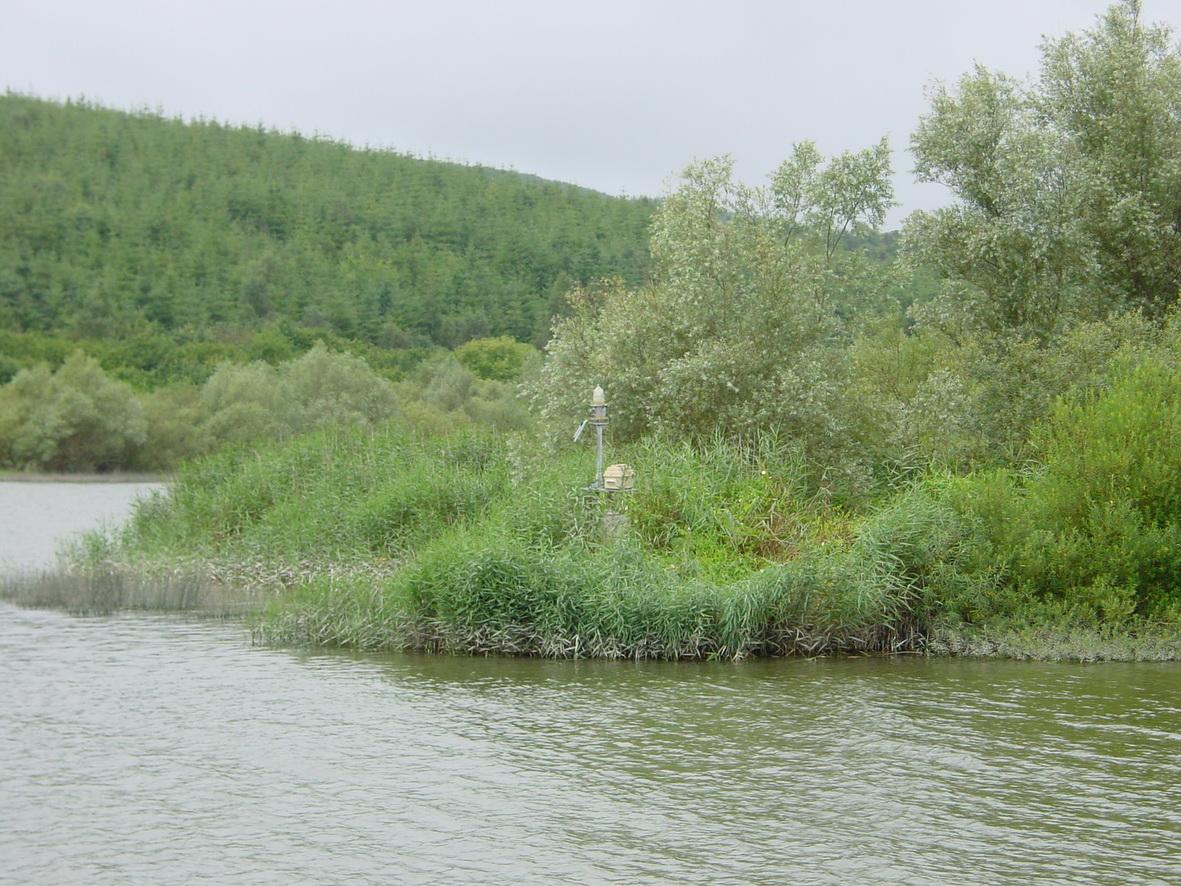 Navigation mark on the downstream end of Fiddown Island
