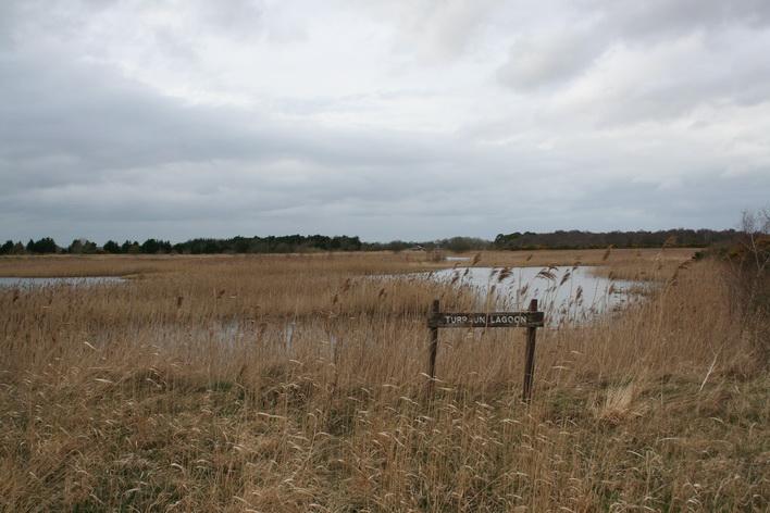 Turraun lagoon 2