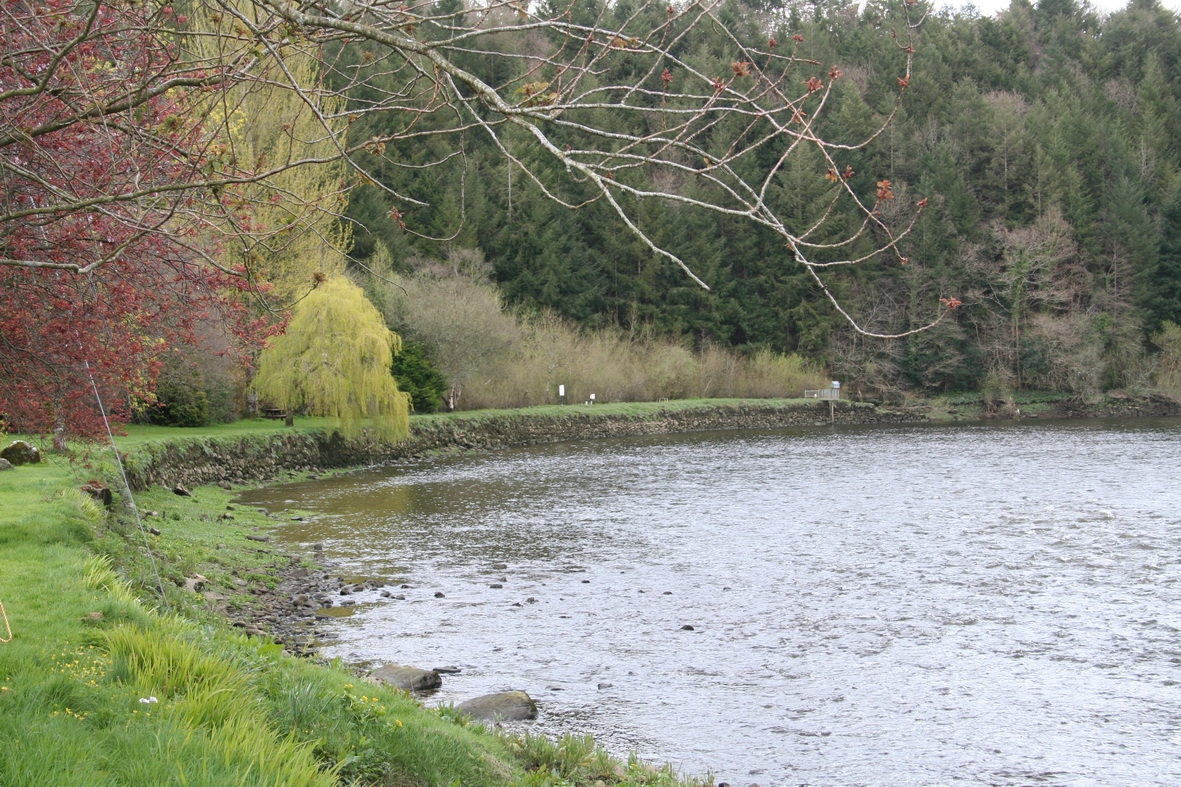 Looking downstream from the river bank to the Steamer Hole