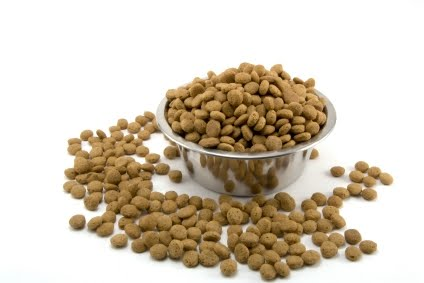 bowl+of+kibble