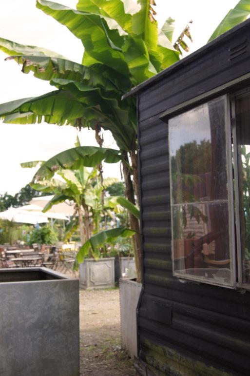 willkommen im sussex pr rie garten. Black Bedroom Furniture Sets. Home Design Ideas