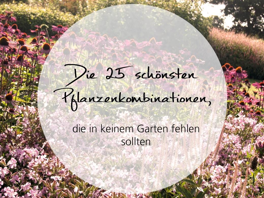 Die 25 schönsten Pflanzenkombinationen, die in keinem Garten fehlen sollten