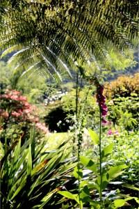 7 Tipps für Naturfreaks in Neuseeland