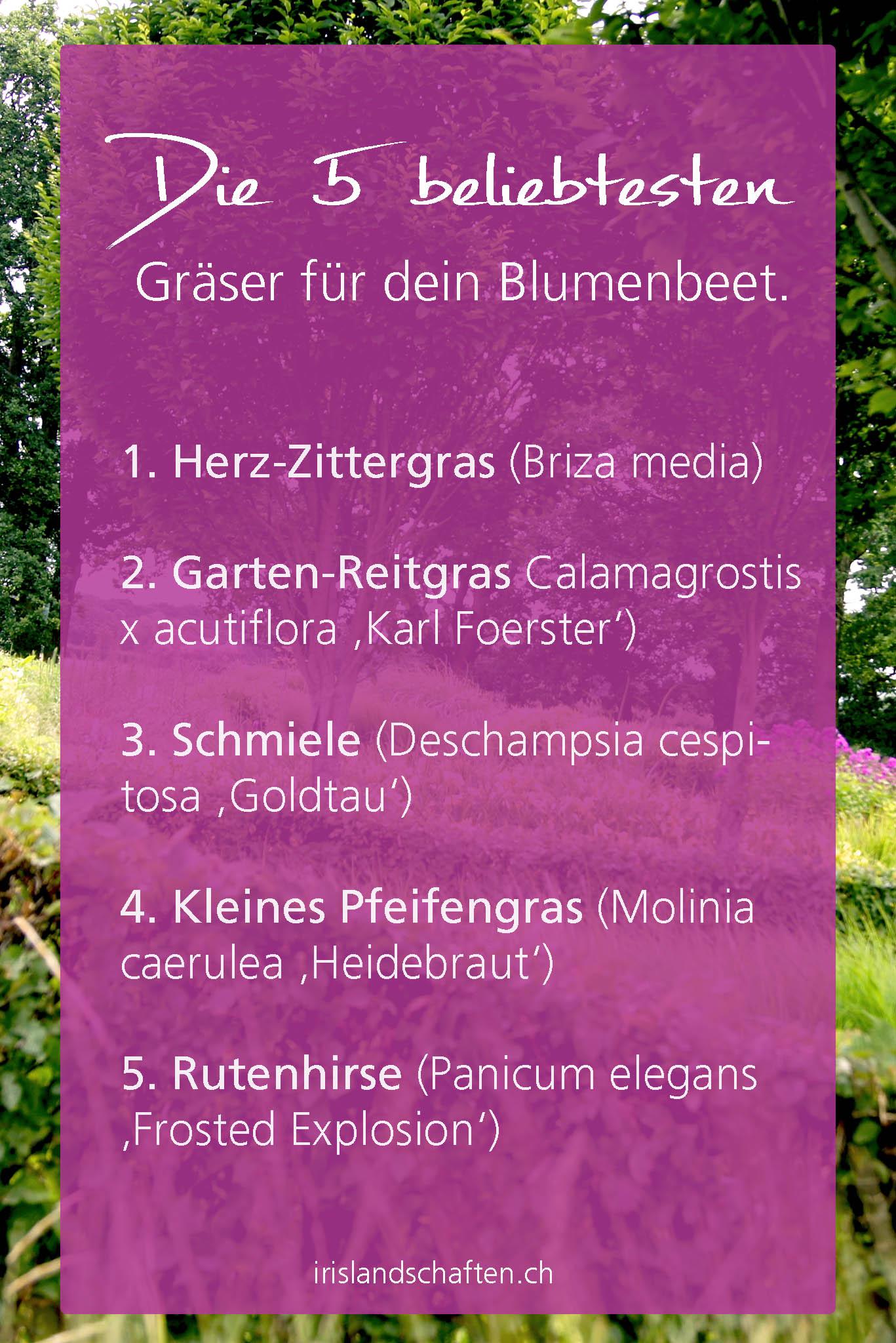 Beet Mit Gräsern Gestalten Gartengestaltung
