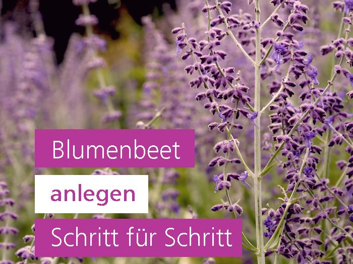 Blumenbeet planen Gartengestaltung