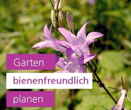 Garten bienenfreundich planen Gartengestaltung