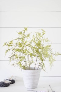 Learn how to create this faux fern arrangement, perfect for styling with this fall or anytime during the year! Tutorial by IrisNacole.com