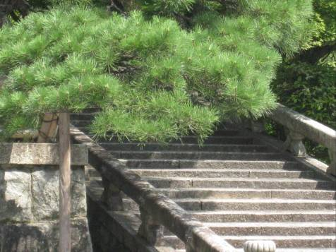 Kiyomize Temple