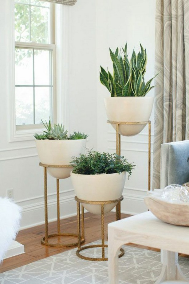 Deko pflanzen wohnzimmer