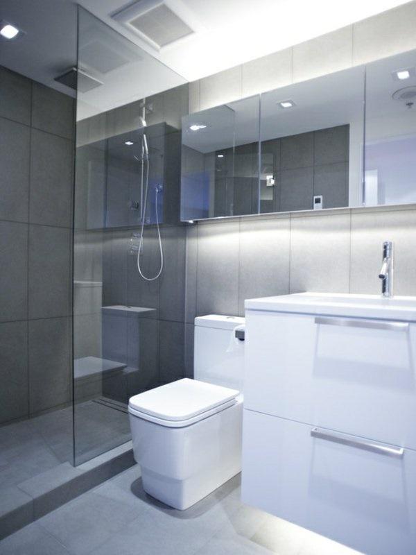 Kleines Badezimmer Planen | Regendusche Mit Der Richtigen ...