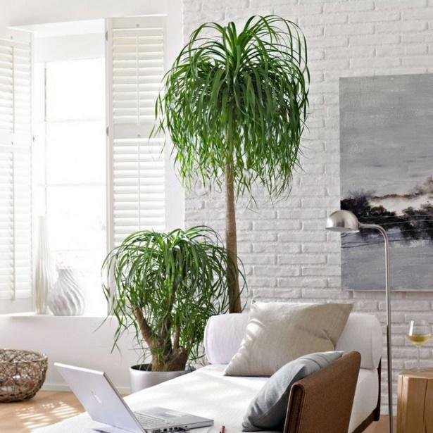 Pflanzen ideen wohnzimmer