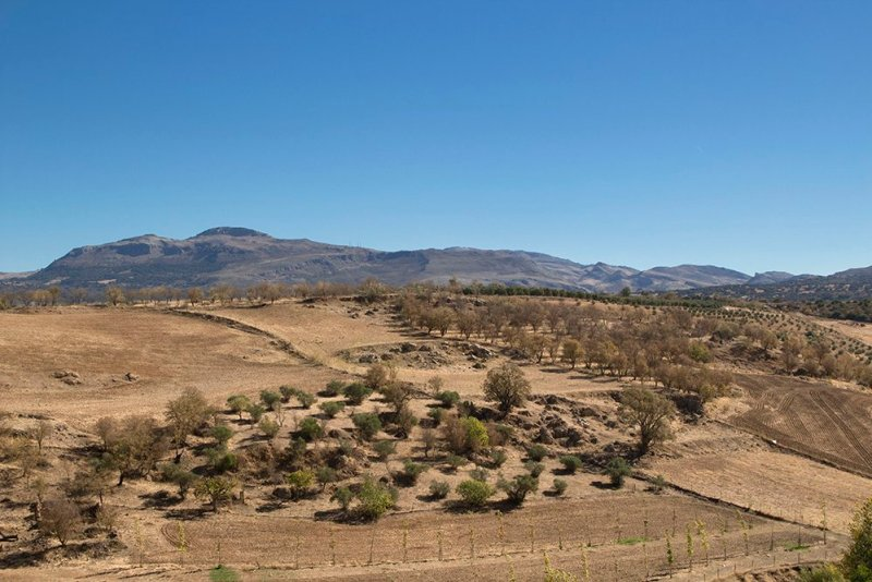 3 weeks of solo travel in Spain, Part 5: 1 day trip to Ronda | View from the path