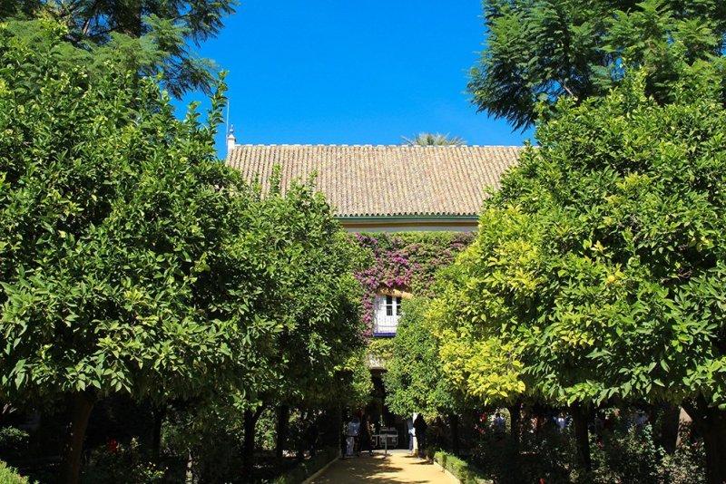 3 Weeks of Solo Travel in Spain, Part 6: 3 days in Seville | Palacio de las Duenas