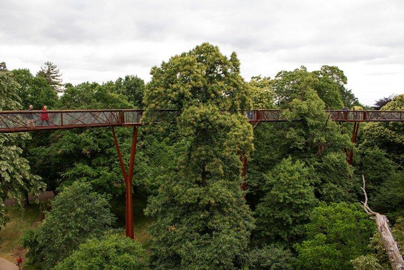 Cool things to do in London | Treetop walk in Kew Gardens
