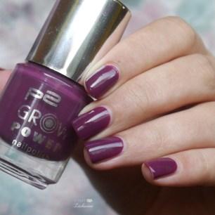 p2 passionate plum (5)