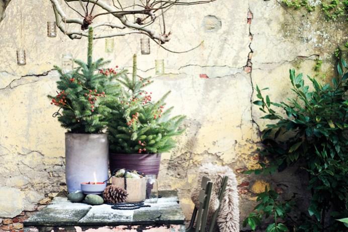 kerstboom_03