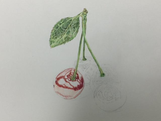 色鉛筆 チェリー