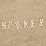 夏休み最後の思い出作り「昼は〝公園で虫取り〟夜は〝お祭り〟」