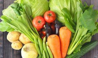 生野菜 冷え性