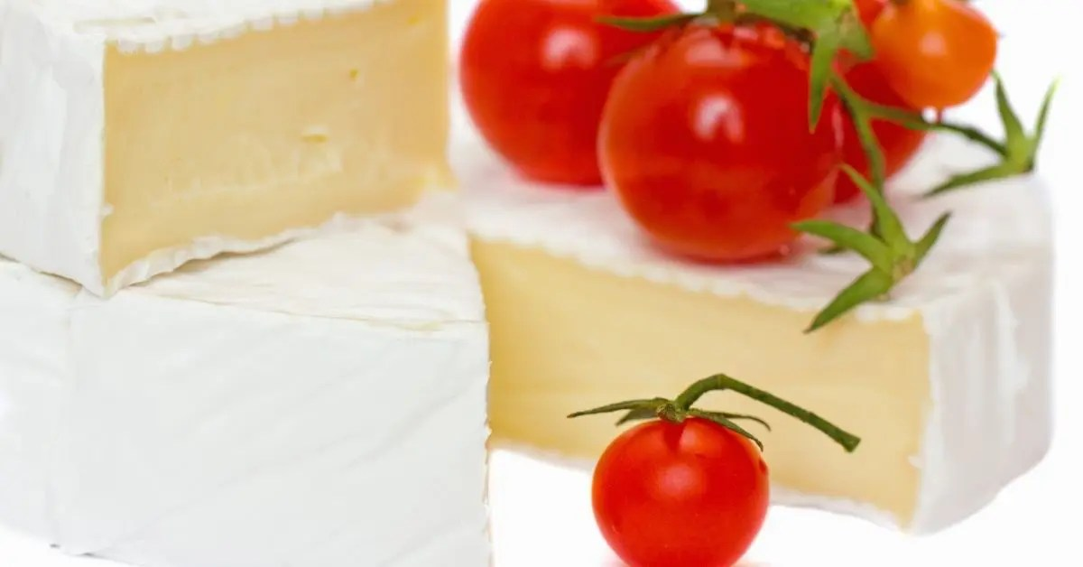 Roasted Tomato Brie Dip
