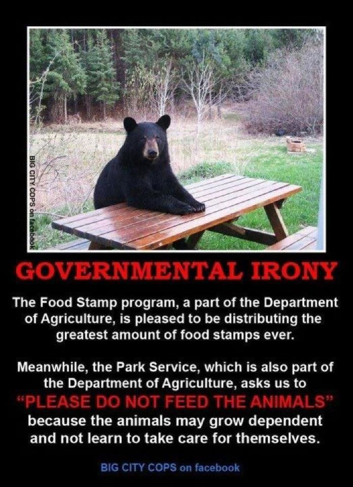 Image result for welfare don't feed the animals
