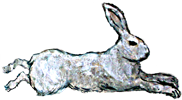 Iron Rabbit Restaurant logo