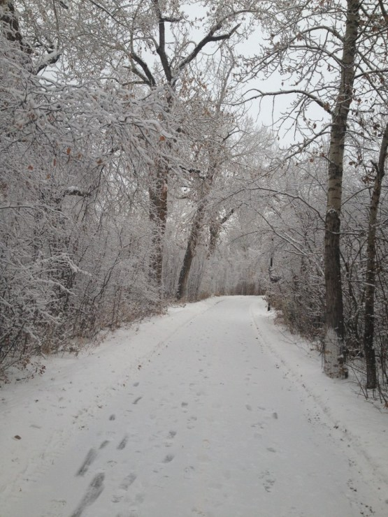 triathlon winter training-winter running