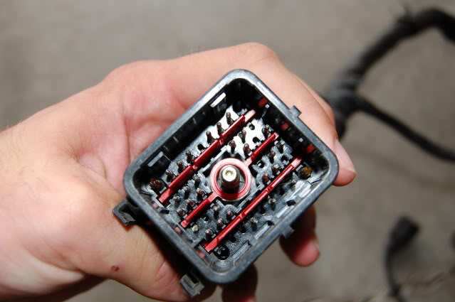 7 Way Car Plug Wiring Diagram 94 Cobra Engine Harness Plug Pin Out Question Ford