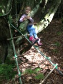tree climbing with hand-made ladder