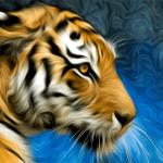 Tiger Art Painting Photo