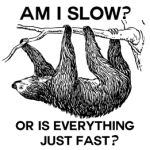 Am I Slow Sloth Humor Products