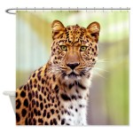 Shower Curtains by Irony Design