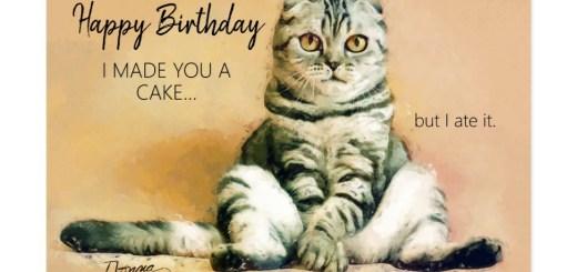 Funny Cat Birthday Cards