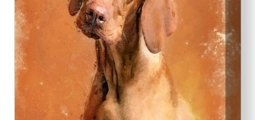 Vizsla Dog Digital Oil Painting Prints and Products