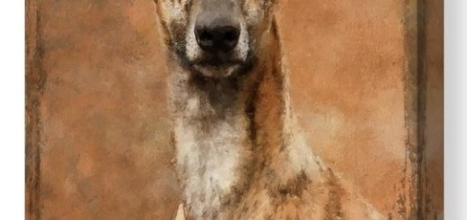 Whippet Dog Portrait Painting Canvas Print