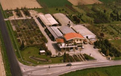 Vivaio ornamentale  Cento  Ferrara  Centro Verde Societ Agricola