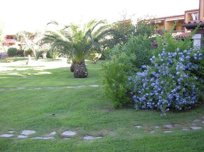 Giardinieri  San Teodoro  Budoni  Porto San Paolo