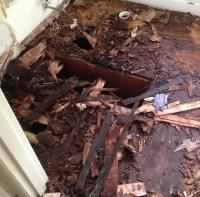 Flooring solution Lexington, KY - Cross Carpet Repair