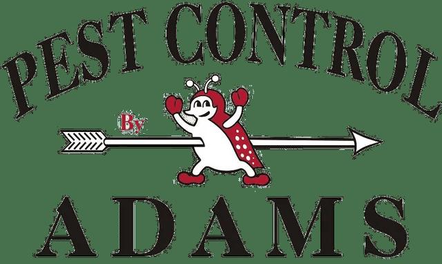 Pest Exterminators : Home Pest Control And Exterminators