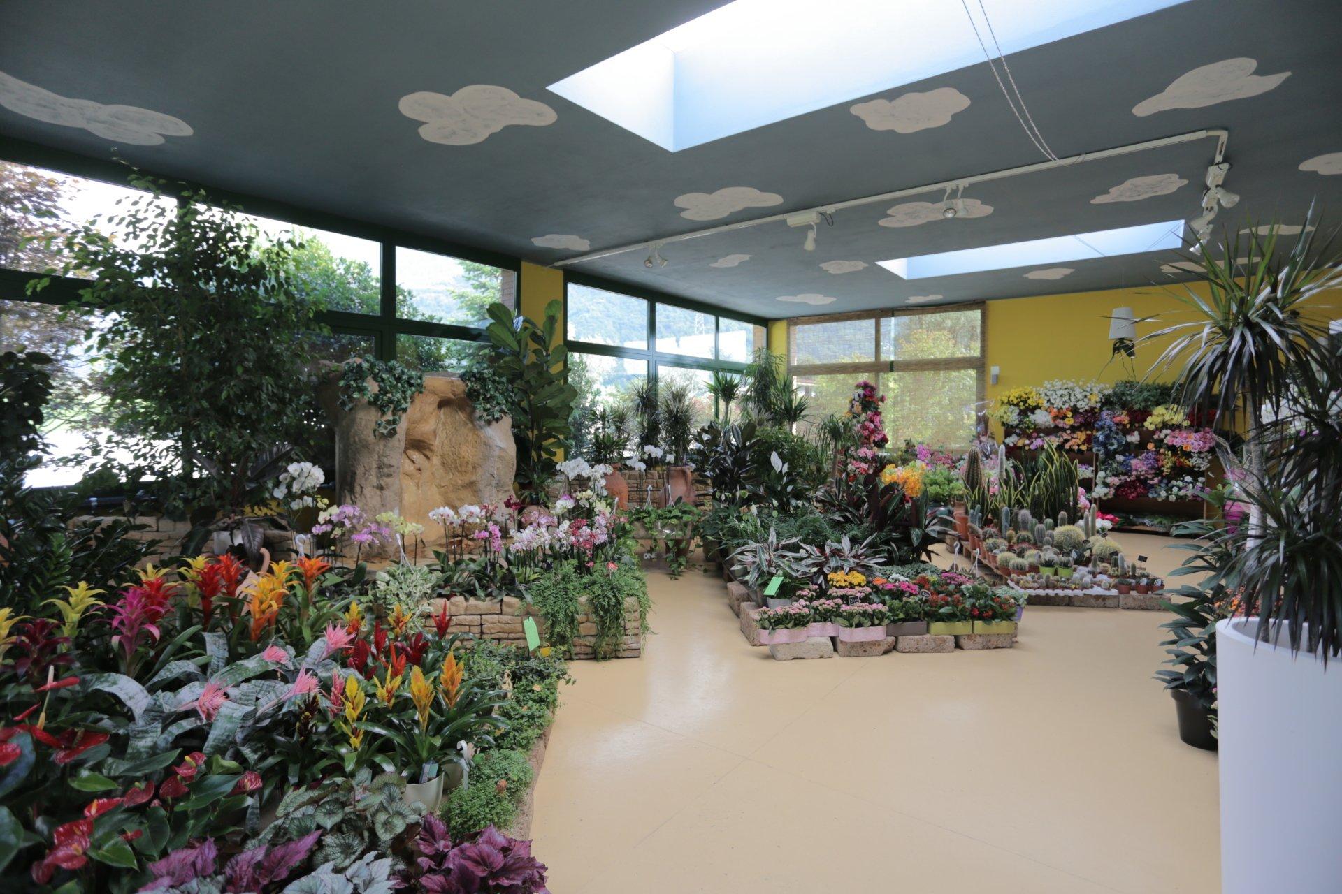 Articoli da giardinaggio  Brescia  Vivaio Bontempi