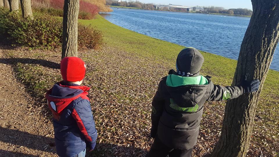 Looking across Willen Lake