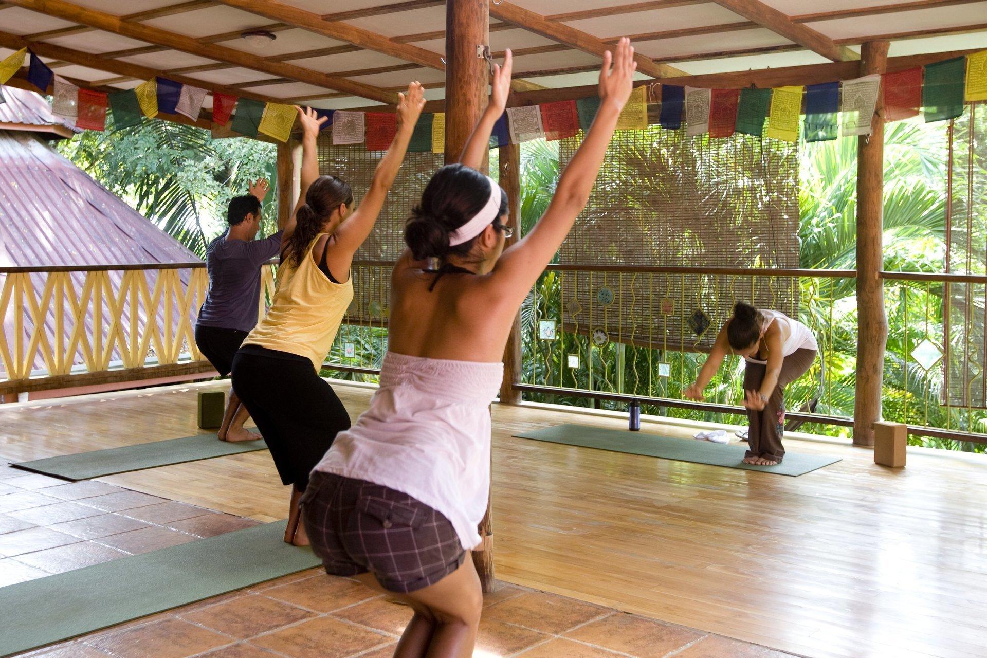 Welcome to Casa Zen Guesthouse and Yoga Center in Santa Teresa