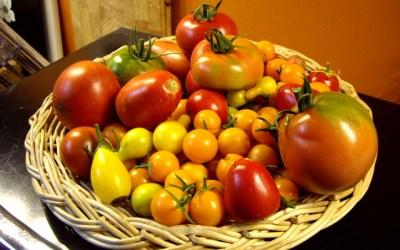Orgânicos: alimentos caros para ricos?