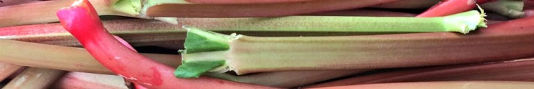 16 0601 Rhubarb Cropped 2