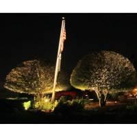 Irrigation RX Landscape Lighting Service