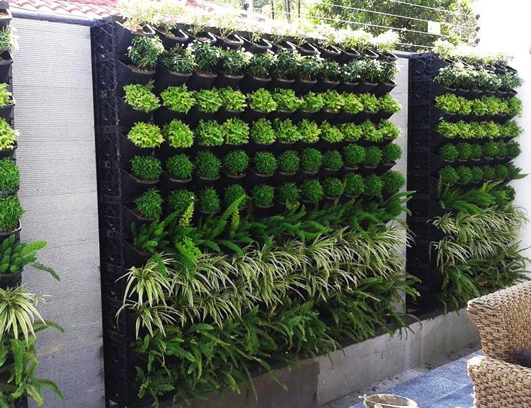 Pond Design Malaysia