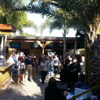 The Patio - Bar in Tampa