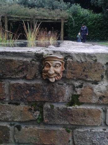 garden_pond_face1